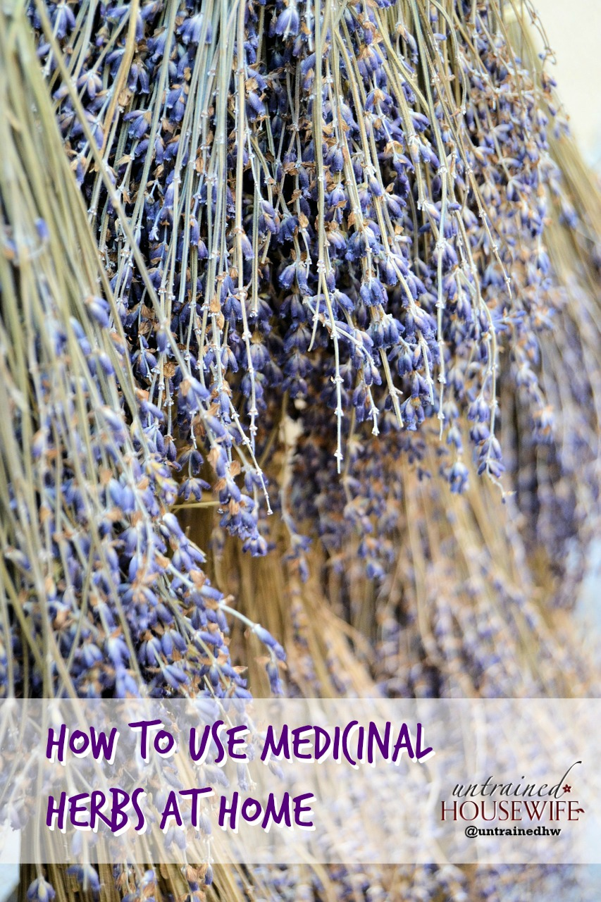 How to Use Medicinal Herbs at Home: Making Herbal ...