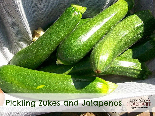 Pickling Zukes and Jalapenos