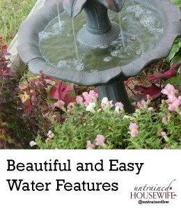 Add a Beautiful Water Feature for Tropical Look #LowesCreator