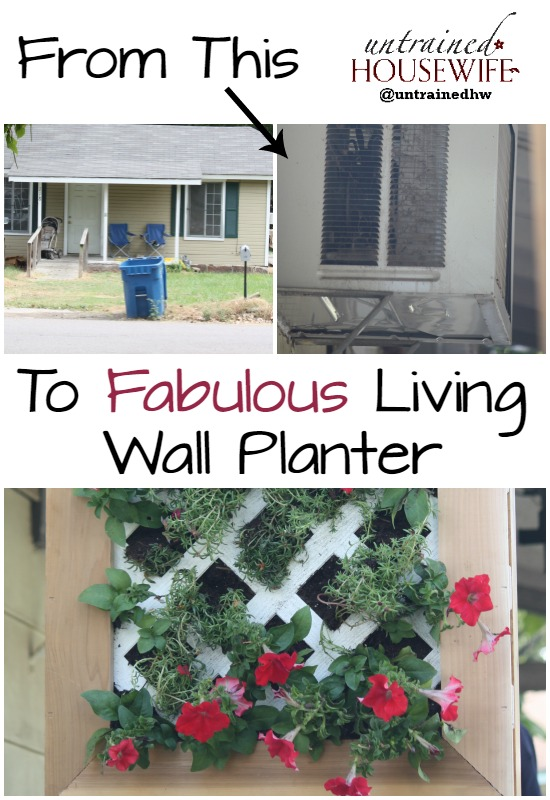 Fabulous Living Wall Planter Before and After