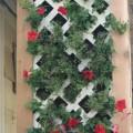 Living Wall Planter as a Natural Screen
