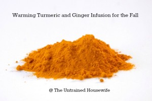 Turmeric Powder for Ginger Turmeric Infusion