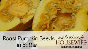 Youtube tutorial and recipe for roasted pumpkin seeds