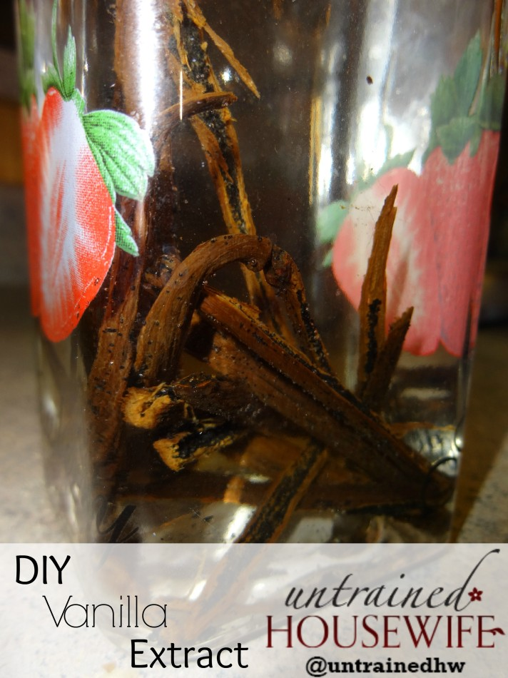 Make your own vanilla extract - 3 simple steps!