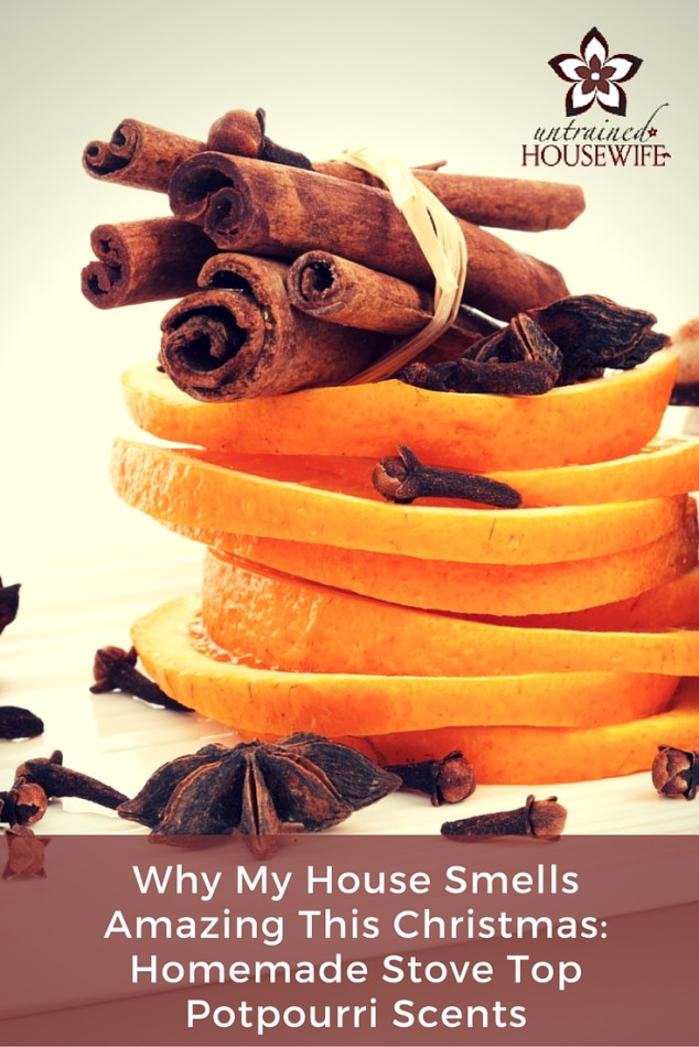 Why my house smells amazing this holiday season - stove top potpourri scent recipes.
