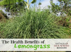The Health Benefits of Lemongrass