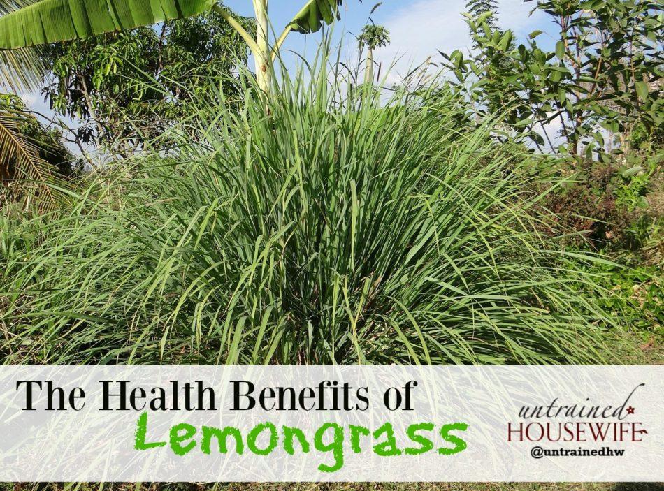 The Health Benefits of Lemongrass