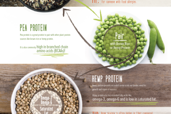Understand your options for Plant-Based Proteins with GNC. #GNCPlantProtein