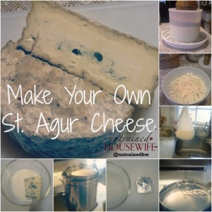 Make Your Own St. Agur Cheese