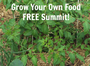 Learn to Grow Your Own Food from Backyard Gardening Experts – FREE!