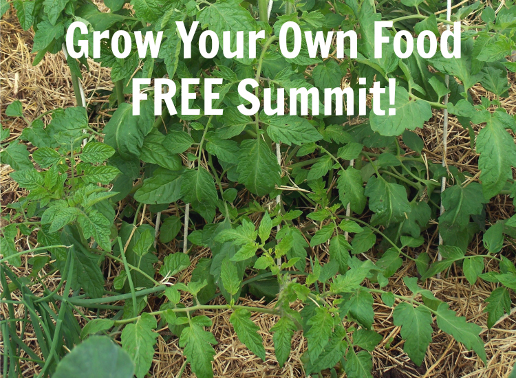Grow Your Own Food Free Summit