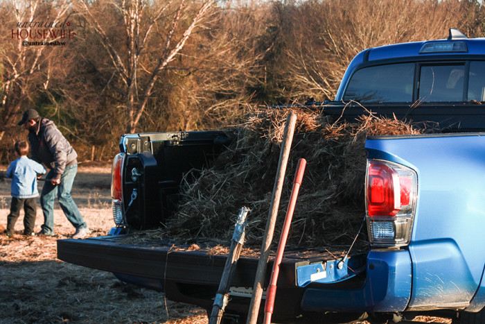 The Toyota Tacoma is perfect for hauling whatever country life throws your way!